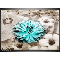 Glas schilderij Gerbera | Sepia, Groen