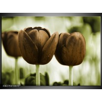 Foto canvas schilderij Tulpen | Bruin, Groen