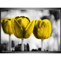 Glas schilderij Tulpen | Geel, Wit, Grijs