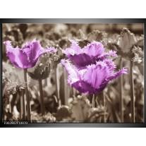 Foto canvas schilderij Tulpen | Paars, Bruin, Grijs