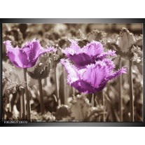 Glas schilderij Tulpen | Paars, Bruin, Grijs