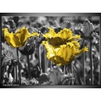 Glas schilderij Tulpen | Geel, Zwart