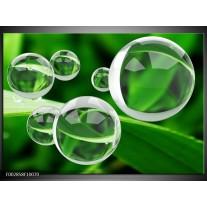 Foto canvas schilderij Cirkel | Groen, Wit