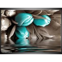Glas schilderij Tulpen | Blauw, Grijs, Zwart