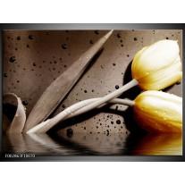 Glas schilderij Tulpen | Geel, Bruin