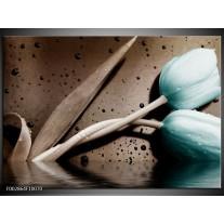 Foto canvas schilderij Tulpen | Blauw, Bruin