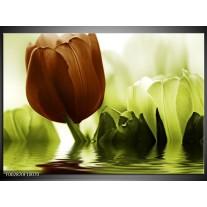 Glas schilderij Tulpen   Groen, Bruin