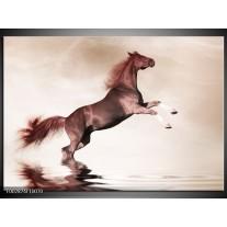 Foto canvas schilderij Paard | Sepia, Bruin