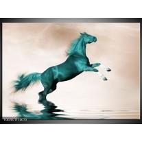 Glas schilderij Paard   Groen, Sepia