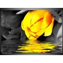 Glas schilderij Tulpen | Geel, Grijs, Zwart