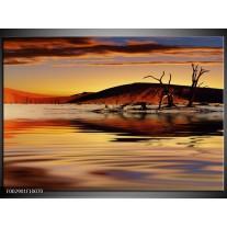 Glas schilderij Natuur | Bruin, Geel, Grijs