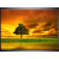 Foto canvas schilderij Natuur   Groen, Bruin, Wit