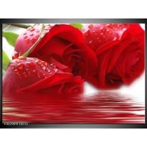 Glas schilderij Roos | Rood, Grijs, Wit