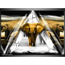 Glas schilderij Olifant | Geel, Wit, Grijs