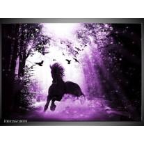 Glas schilderij Paard | Paars, Zwart, Wit