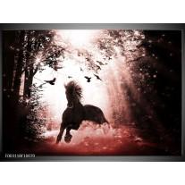 Glas schilderij Paard | Rood, Zwart, Wit