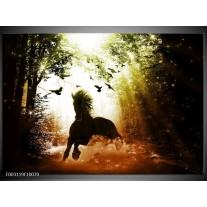 Glas schilderij Paard | Groen, Zwart, Wit
