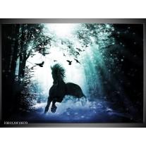 Glas schilderij Paard | Blauw, Zwart, Wit
