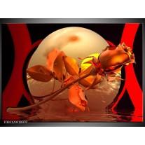 Glas schilderij Roos   Rood, Goud, Geel