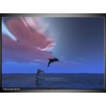 Glas schilderij Dolfijn | Blauw, Paars, Grijs