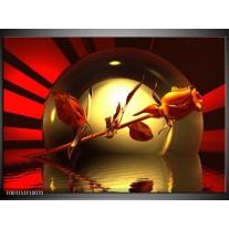 Glas schilderij Roos | Zwart, Goud, Rood