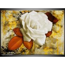 Foto canvas schilderij Roos | Wit, Bruin, Geel