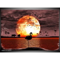 Glas schilderij Natuur | Geel, Rood, Zwart