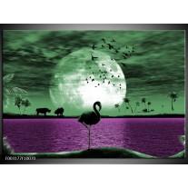 Foto canvas schilderij Natuur | Groen, Paars, Wit