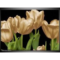 Glas schilderij Tulpen | Goud, Groen, Zwart