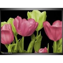 Foto canvas schilderij Tulpen | Roze, Groen, Zwart