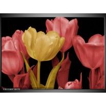 Glas schilderij Tulpen | Geel, Roze, Zwart
