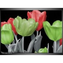 Glas schilderij Tulpen | Groen, Grijs, Rood