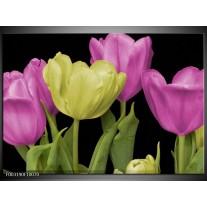 Foto canvas schilderij Tulpen | Paars, Groen, Zwart