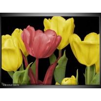 Glas schilderij Tulpen | Roze, Geel, Groen