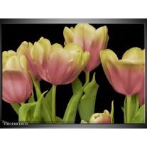 Glas schilderij Tulpen | Roze, Zwart, Wit
