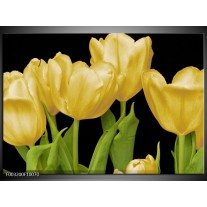 Glas schilderij Tulpen | Geel, Groen, Zwart