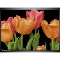 Glas schilderij Tulpen | Oranje, Rood, Groen