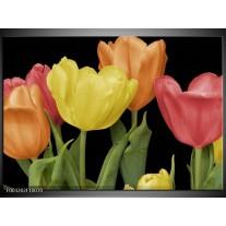 Foto canvas schilderij Tulpen | Geel, Oranje, Rood