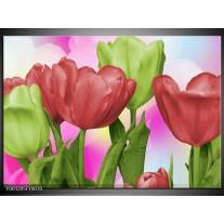 Glas schilderij Tulpen | Rood, Groen, Paars
