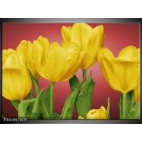 Glas schilderij Tulpen | Geel, Rood, Groen