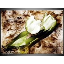 Foto canvas schilderij Tulpen   Groen, Bruin, Wit