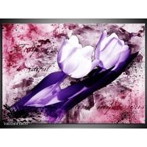 Glas schilderij Tulpen | Paars, Wit