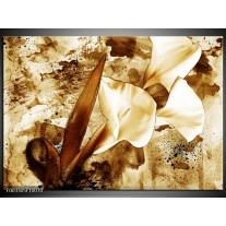 Glas schilderij Bloem | Bruin, Wit