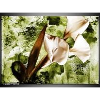Foto canvas schilderij Bloem | Bruin, Wit, Groen