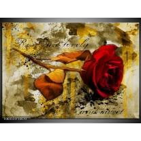 Foto canvas schilderij Roos | Rood, Bruin, Geel