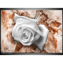 Foto canvas schilderij Roos | Wit, Bruin