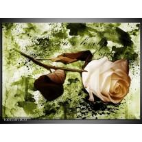 Foto canvas schilderij Roos | Groen, Bruin, Wit