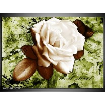 Glas schilderij Roos | Bruin, Wit, Groen
