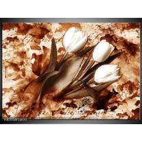 Glas schilderij Tulpen | Bruin, Wit