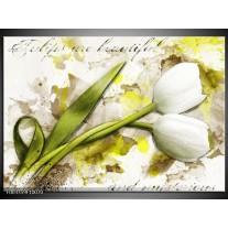 Glas schilderij Tulpen | Groen, Wit, Geel